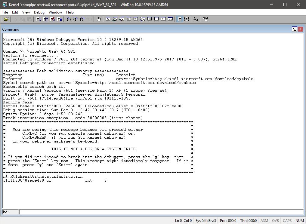 WinDBG_screenshot_1